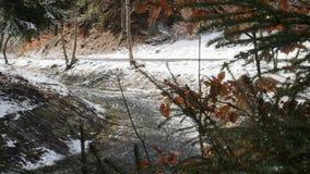 Pittoresk sikt av den snabba fl?dande floden med aktuellt skapande skum f?r hastighet, i att f?rbluffa vinterskogen med tr?d pano lager videofilmer