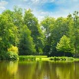 Pittoresk sjö, sommarskog och himmel Royaltyfria Foton