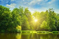 Pittoresk sjö, sommarskog på banker och soluppgången Arkivbild
