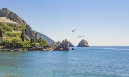 Pittoresk stenig kust av Blacket Sea med fåglar som flyger till horisonten crimea royaltyfri bild