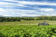 Pittoresk stuga i Dublin Mountains Arkivbild