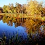 Pittoreska Autumn Lake Reflections Arkivbild