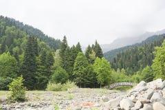Pittoreska berg i närheten av sjön Ritsa i Abchazien Arkivbild