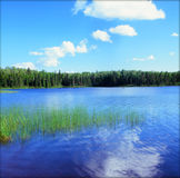 Pittoreska Homer Lake Vista - nordostliga Minnesota Royaltyfria Foton