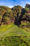 Pittoreska och majestätiska gröna berg av madeiran, Portugal Arkivfoton