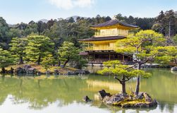 Pittoreskt landskap av den berömda guld- paviljongtemplet i Kyoto Japan royaltyfria bilder