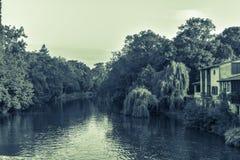 Pittoreskt landskap av floden och träd Arkivfoto