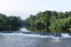 Pittoreskt landskap av floden och träd Royaltyfri Foto