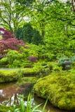 Pittoreskt landskap av japanträdgården Arkivbild