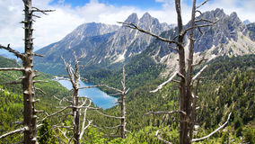 Pittoreskt naturlandskap med sjön Royaltyfri Bild