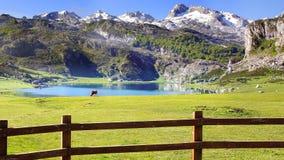 Pittoreskt naturlandskap med sjön Arkivfoto