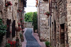 Pittoresque road in Assisi with red flowers royalty free stock photography