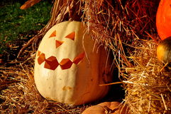 Pittsboro, тыква NCl хеллоуина Стоковая Фотография