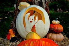 Pittsboro, Kürbise NCl Halloween Lizenzfreie Stockfotos