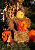 Pittsboro, potirons de NCl Halloween Images libres de droits