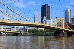 Pittsburgh. City skyline, United States. Ominous birds royalty free stock image