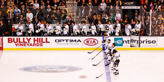 Pittsburgh Penguins Photos stock