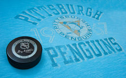 Pittsburgh Penguins Immagine Stock Libera da Diritti