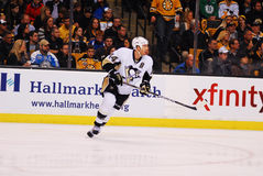 Pittsburgh Penguins di Orpik dei ruscelli Immagini Stock Libere da Diritti