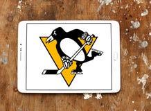 Pittsburgh Penguins zamraża drużyna hokejowa loga Fotografia Stock
