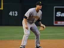 Pittsburgh Pirates Royalty Free Stock Image