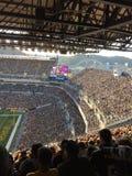 Pittsburgh Steelers fan Fotografia Royalty Free