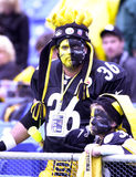 Pittsburgh Steelers fans. Stock Photos