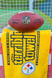 Pittsburgh Steelers Terrible tovel Stock Images