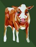Pittura acrilica del bestiame di Hereford della mucca illustrazione vettoriale