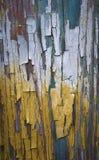 Pittura ad olio di superficie incrinata Fotografia Stock Libera da Diritti