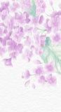 Pittura artistica bella del fiore Immagine Stock