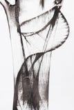 Pittura astratta della spazzola Immagine Stock