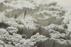 Pittura bianca secca sulle setole della macro del rullo immagini stock
