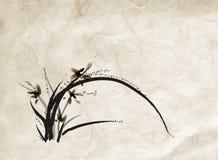 Pittura cinese dell'orchidea Immagini Stock Libere da Diritti