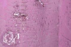 Pittura colorata rosa stagionata sul pannello di legno rustico fotografia stock