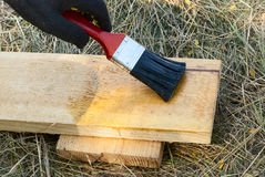 Pittura del legno Fotografia Stock Libera da Diritti