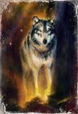 Pittura del lupo sulla tela, fondo di colore su carta, illustrazione multicolore Immagini Stock