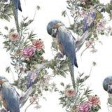 Pittura dell'acquerello con gli uccelli ed i fiori, modello senza cuciture su fondo bianco illustrazione di stock