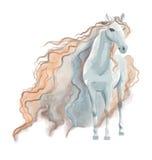 Pittura dell'acquerello del cavallo Immagine Stock Libera da Diritti
