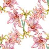 Pittura dell'acquerello della foglia e dei fiori, modello senza cuciture illustrazione di stock