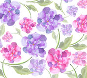 Pittura dell'acquerello di bei fiori della peonia Fotografia Stock Libera da Diritti