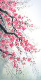 Pittura dell'acquerello Rami della ciliegia dei fiori illustrazione vettoriale