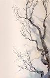 Pittura dell'acquerello Rami nudi di vecchio albero royalty illustrazione gratis