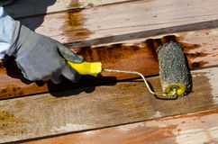 Pittura della spazzola della tenuta della mano del lavoratore sul legno Immagine Stock
