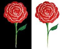 Pittura delle rose rosse come stile astratto su fondo in bianco e nero Fotografia Stock