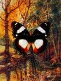 Pittura a olio del paesaggio con il fiume nella foresta di autunno Immagine Stock