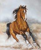 Pittura a olio di un cavallo sulla prateria Immagini Stock