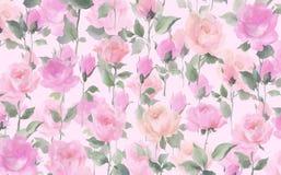 Pittura a olio impressionista del modello senza cuciture dell'acquerello di Rosa su una terra bianca Fotografie Stock Libere da Diritti