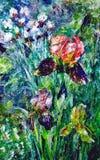 Pittura a olio Iridigialle e bianche del urple di Ð, nel giardino Immagini Stock