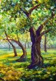 Pittura a olio originale sul materiale illustrativo moderno di impressionismo del parco della tela del paesaggio soleggiato di le fotografie stock